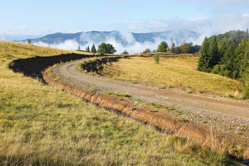 Landelijke weg langs de rand van het bos royalty-vrije stock foto
