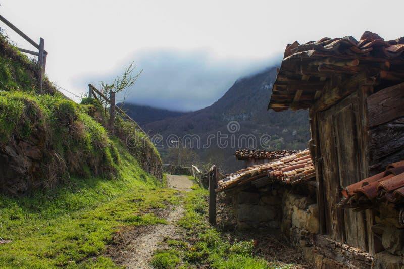 landelijke weg naar de bergen stock foto's