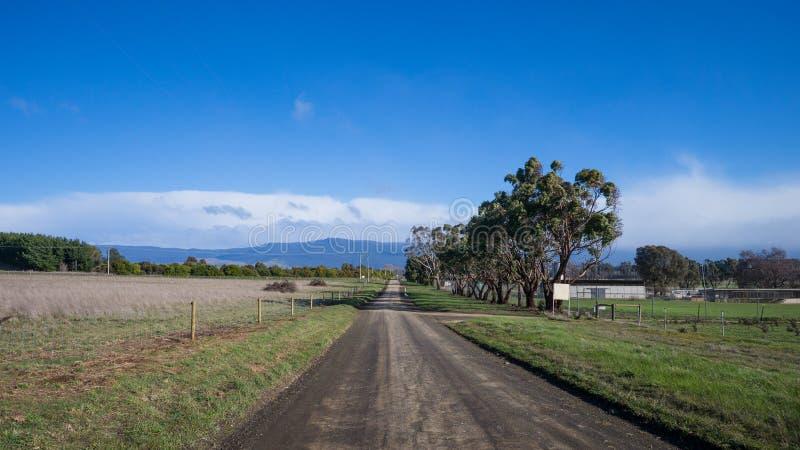 Landelijke weg in Tasmanige royalty-vrije stock afbeeldingen