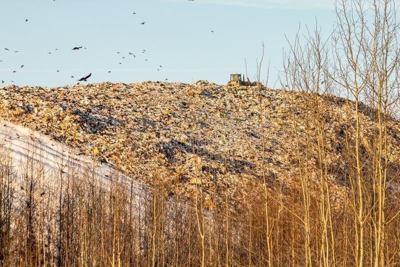 landfill imagem de stock
