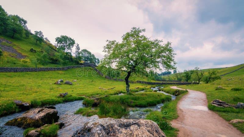 Природа, растительность, заповедник, гористые Landforms Бесплатное  из Общественного Достояния Cc0 Изображение