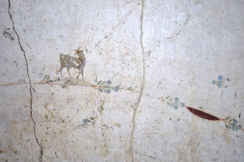Landhaus Poppaea, Fresko einer Ziege, Oplontis stockbilder