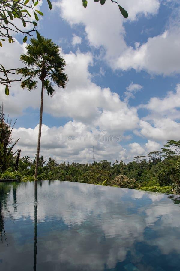 Landhausunendlichkeitspool mit einer Palme und einem Regenwald mit Blau und Wolken im Himmel in Bali Indonesien stockfotos