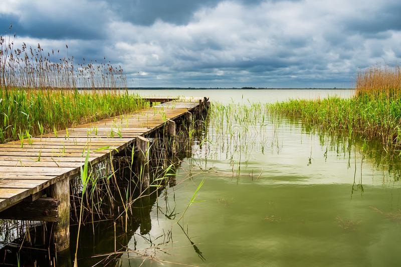 Landing stage on a lake with reeds.  stock photos