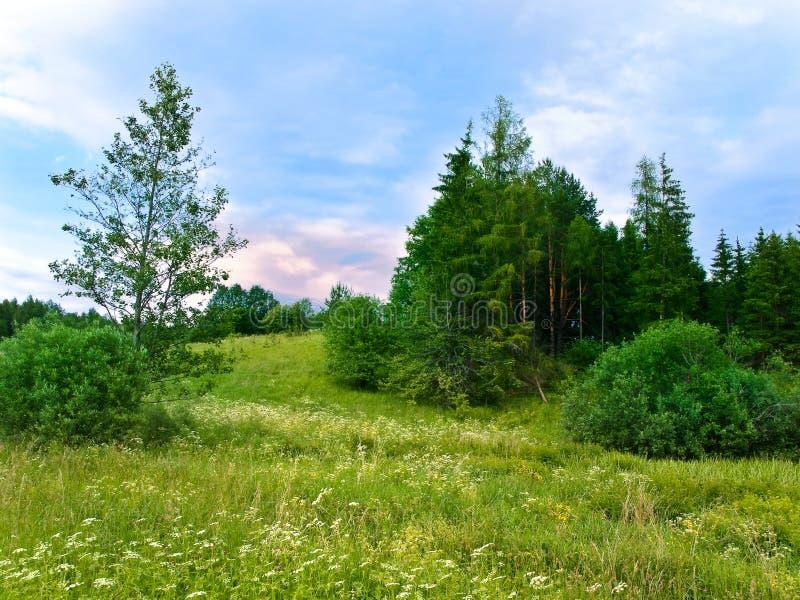 Landlandschaft stockfotografie