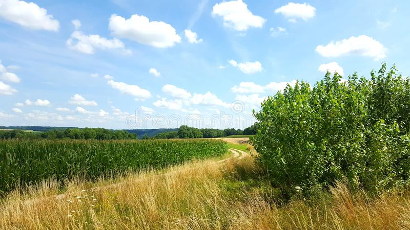 Landleben w Franken Natura Pic fotografia royalty free