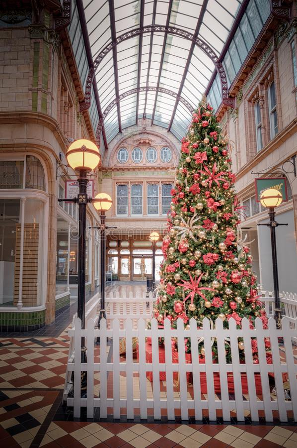 Landmark, Tree, Architecture, Christmas Tree stock images