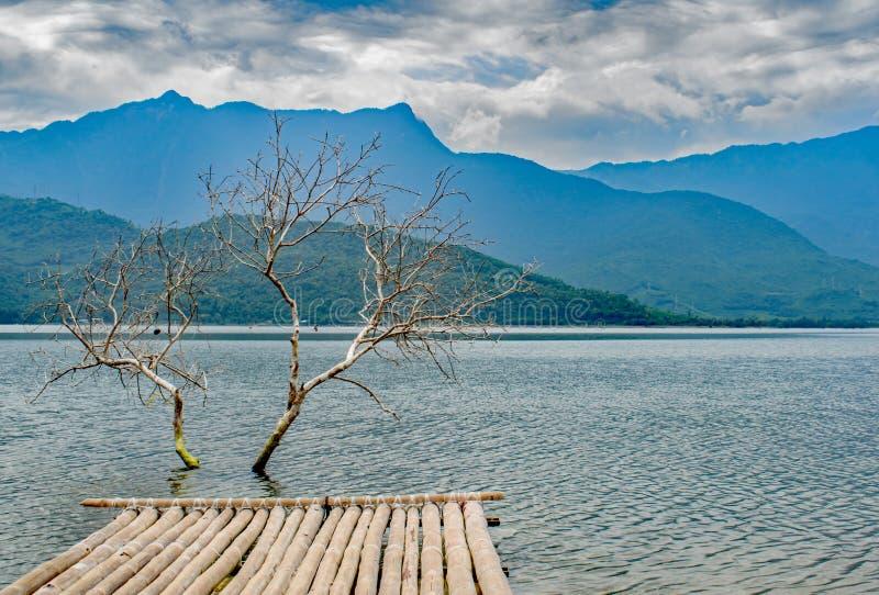 Landningetapp till det döda trädet i sjön royaltyfri fotografi