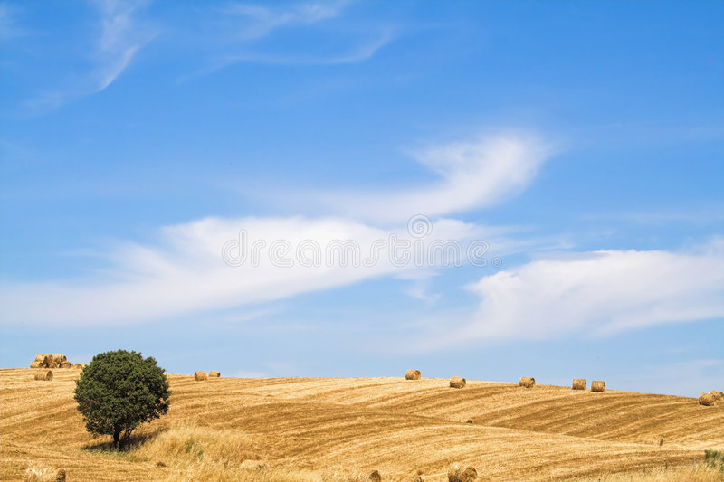 landscap Μεσόγειος χαρακτηρισ& στοκ φωτογραφία με δικαίωμα ελεύθερης χρήσης
