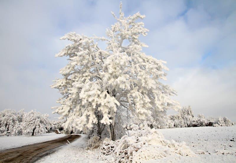 Landscap di inverno fotografie stock libere da diritti
