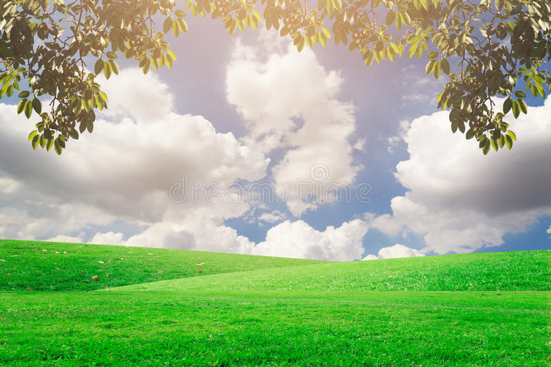 The landscap sky and grass on background retouch royalty free stock photos