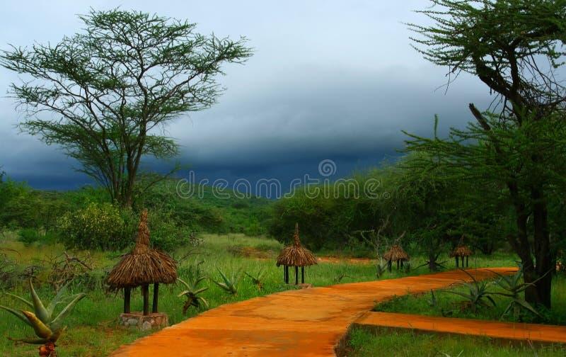 Download Landscape stock photo. Image of safari, travel, outdoor - 10069204