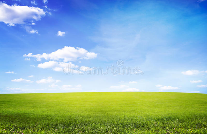 Landscape. With grass field and sky stock image