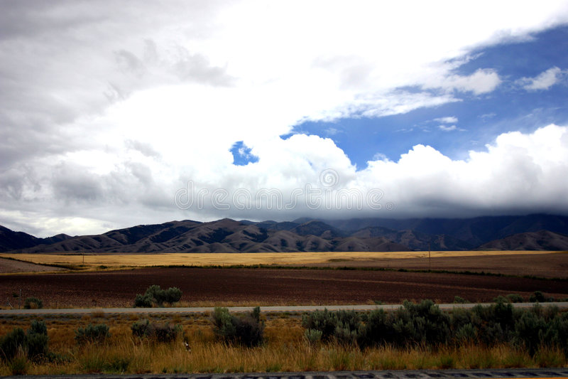 Download Landscape stock photo. Image of vegetation, plants, farmland - 24460