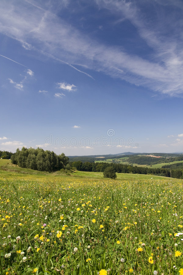 Landscape. Summer landscape - meadows, woods and hills on horizon stock photo