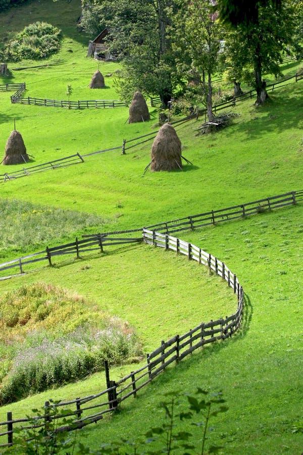 Download Landscape stock photo. Image of restrict, haycock, village - 8466354