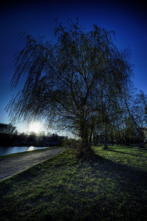Free Landscape Stock Photography - 9436212