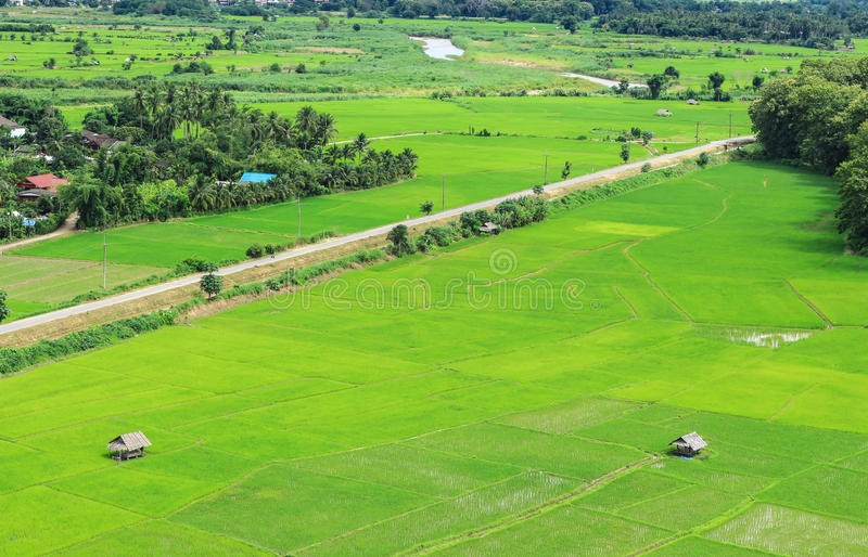 Landscape agriculture village. In the valley stock image
