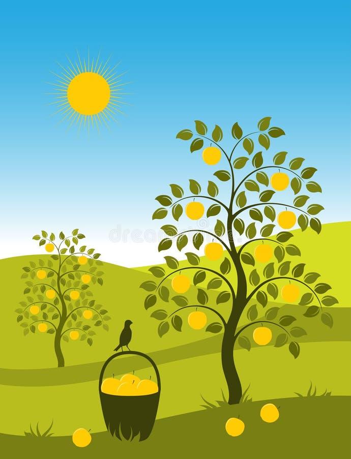 Landscape with apple trees. Illustrated landscape with apple trees and basket of apples royalty free illustration