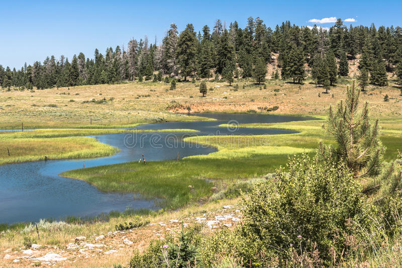 Landscape around Duck Creek, Utah royalty free stock photos