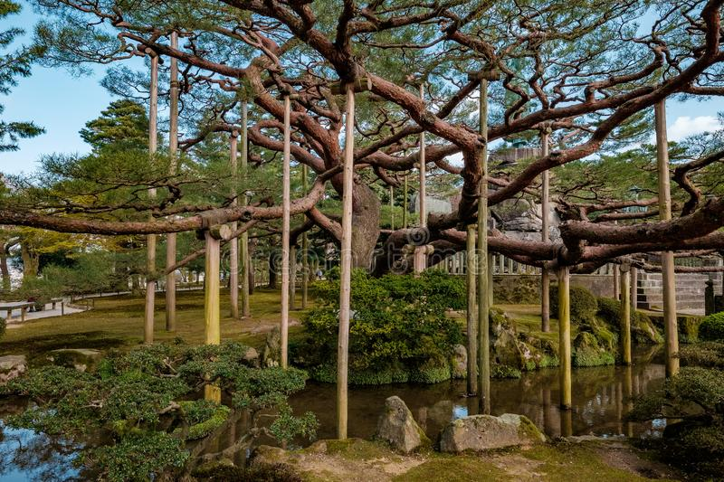 Landscape around Kenrokuen garden one of the most beautiful landscape gardens in Japan, Locate in Kanazawa city. Landscape around Kenrokuen garden one of the royalty free stock images
