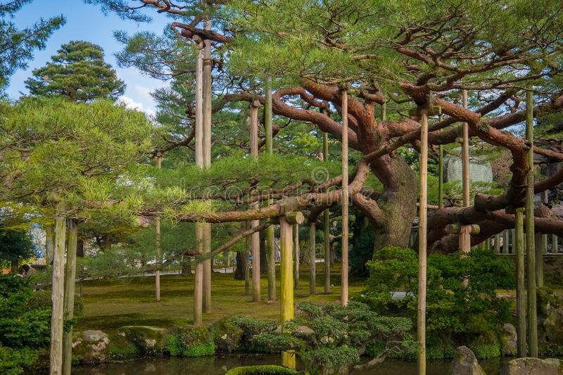 Landscape around Kenrokuen garden one of the most beautiful landscape gardens in Japan, Locate in Kanazawa city. Landscape around Kenrokuen garden one of the royalty free stock photography