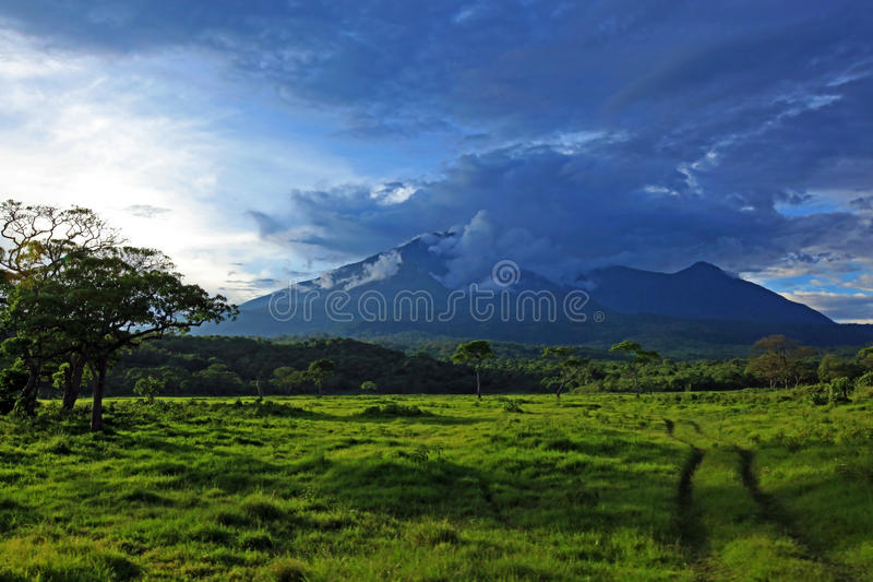 Road to Meru. A landscape of Arusha national park, showing Meru mountain stock photography