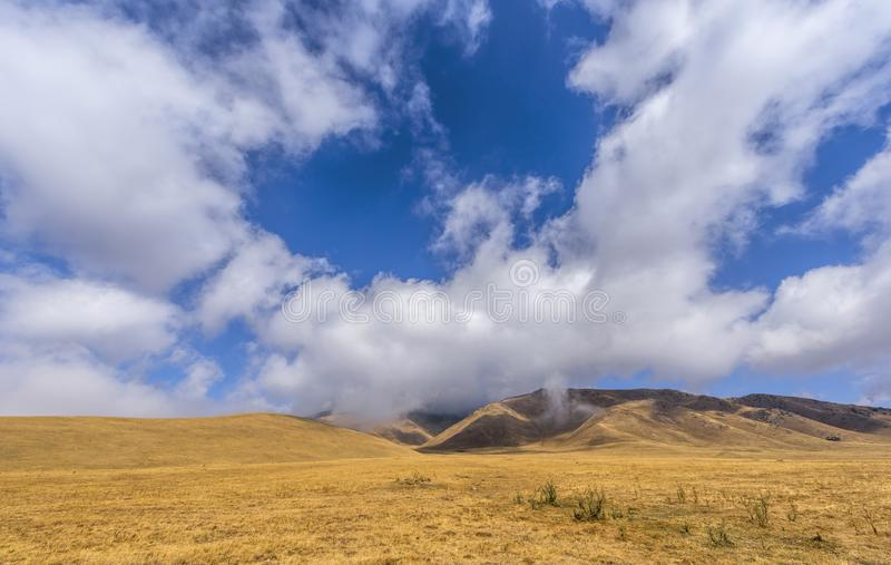 Landscape on Assy Plateau royalty free stock photos