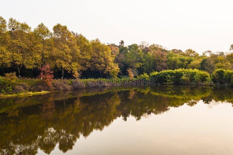 Landscape of autumn