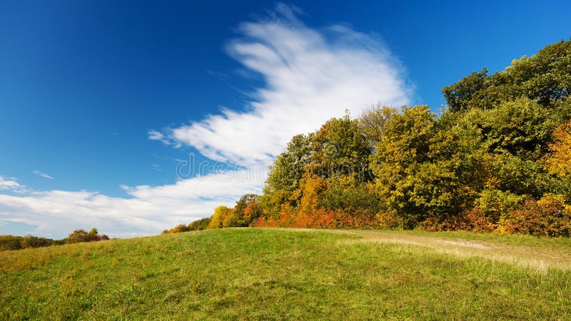 Landscape in autumn stock image