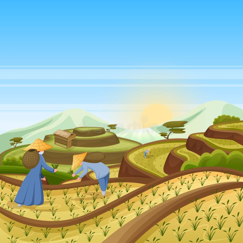 Landscape background with green rice terrace fields. People harvest rice in field. Harvesting, agriculture vector illustration. Asian landscape background with royalty free illustration