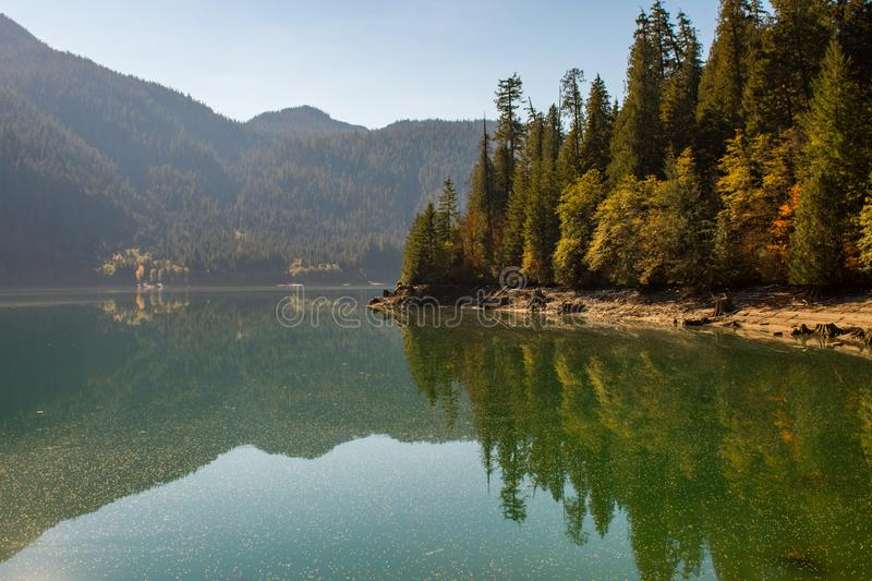 Landscape of Baker Lake water covered with pollen and fallen tree seeds, in North Cascades. Washington, USA stock images