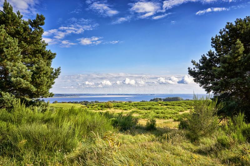 Landscape the Baltic Sea between two trees, on the island Hiddensee. Panorama of Hiddensee. Meadow, nature, baltic-sea-island, mecklenburg-vorpommern, summer stock images
