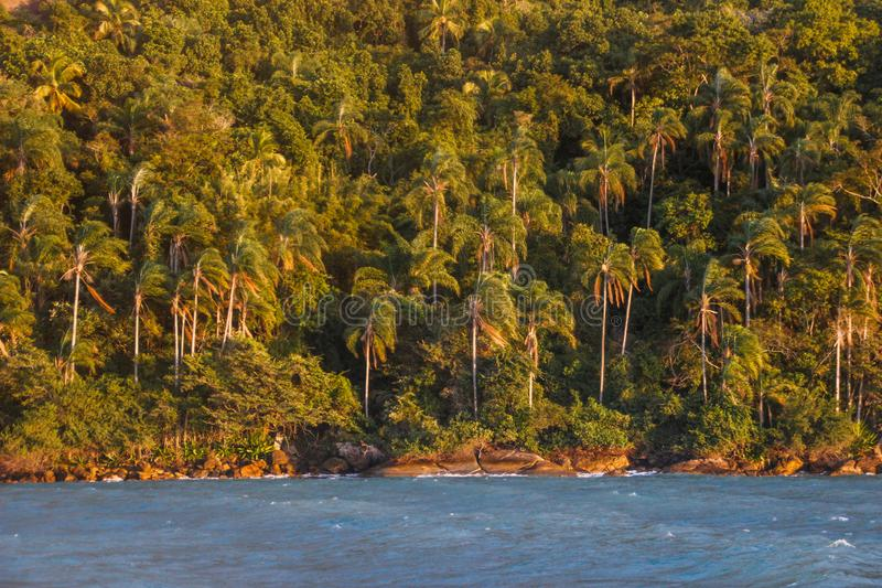 Landscape with the beach of Brazil on the island of Ilha Grande. A mountain covered with tropical coconut trees. stock photography
