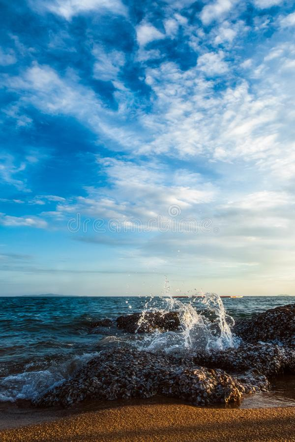 Landscape of the beach at golden hour, Vertical royalty free stock photography