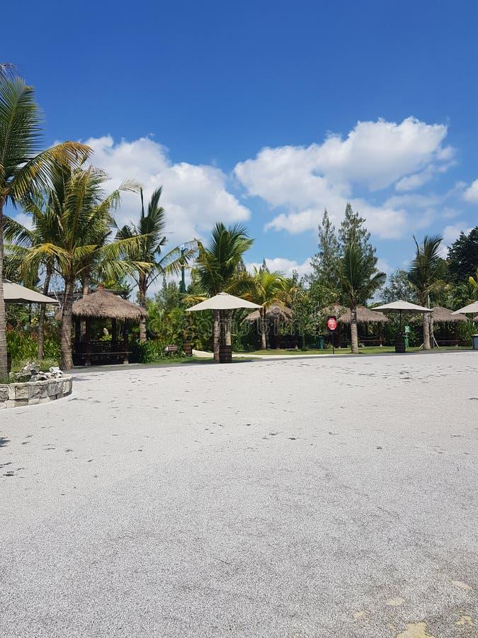 Landscape on beach stock image