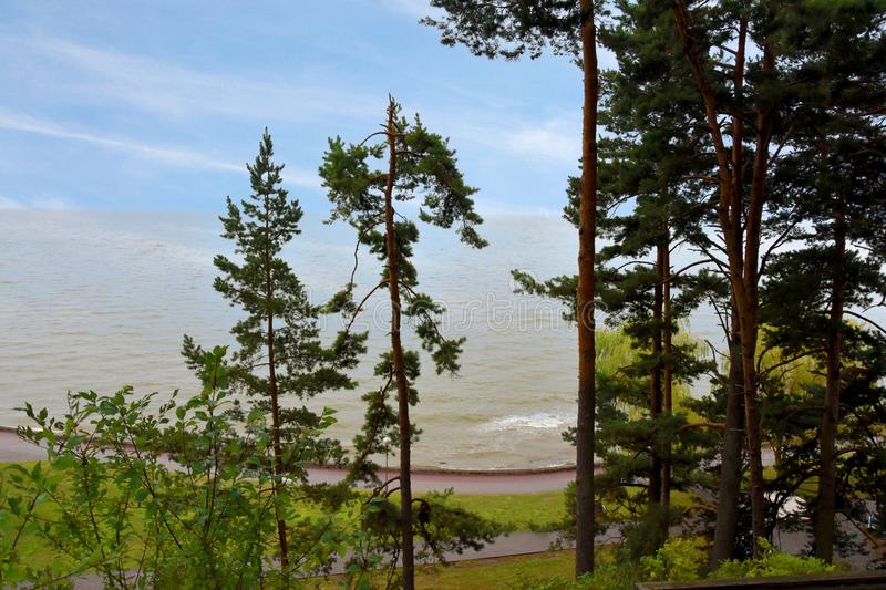 Nida, curonian spit. Landscape with beach and trees in Nida, curonian spit, lithuania. The curonian spit separating the Courland Lagoon from the Baltic Sea stock photos