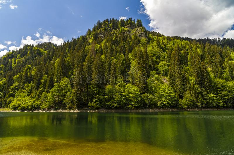 Landscape with a beautiful lake in Parang mountains royalty free stock images