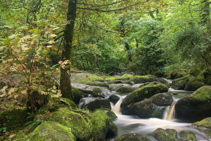 Landscape of Becky Falls waterfall in Dartmoor National Park Eng. Becky Falls waterfall landscape in Dartmoor National Park England royalty free stock images