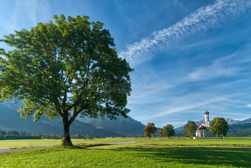 Download Landscape With Big Tree Royalty Free Stock Photo - Image: 23203115