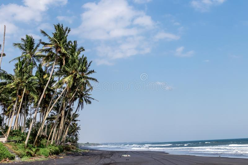 Landscape of black sand beach with beautiful palms. Bali island. stock photography