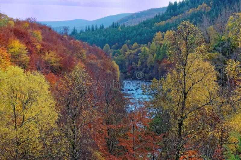 Landscape of the Black Water in Autumn royalty free stock image