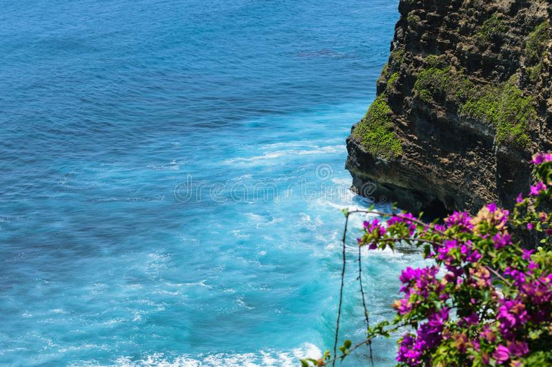 Landscape of blue Indian ocean washing the cliff in Bali, Indonesia. Purple flowers are blurred.  royalty free stock photography