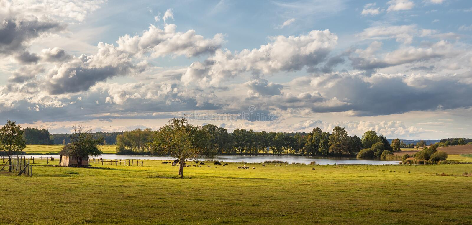 Landscape with blue sky and clouds - panorama of rural countryside with pond royalty free stock image