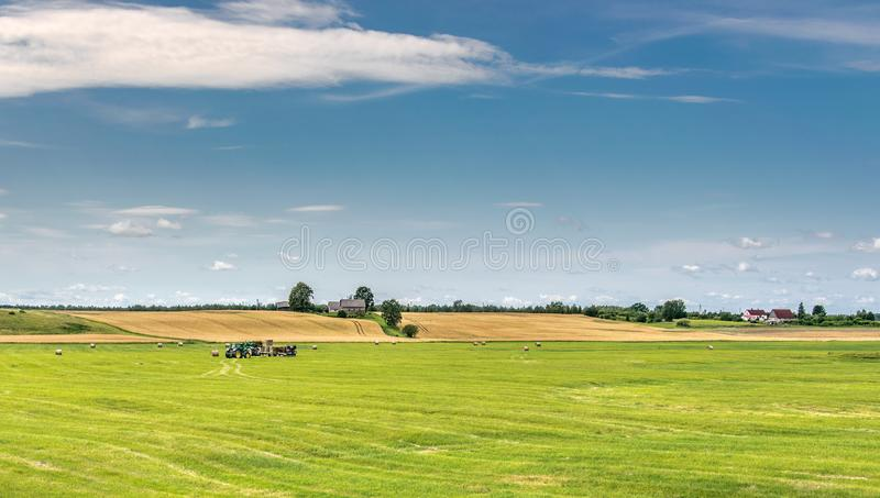 Landscape with blue sky, yellow field and green meadow on which tractors operate. Tractors work in the meadow storing rolls with hay royalty free stock photography