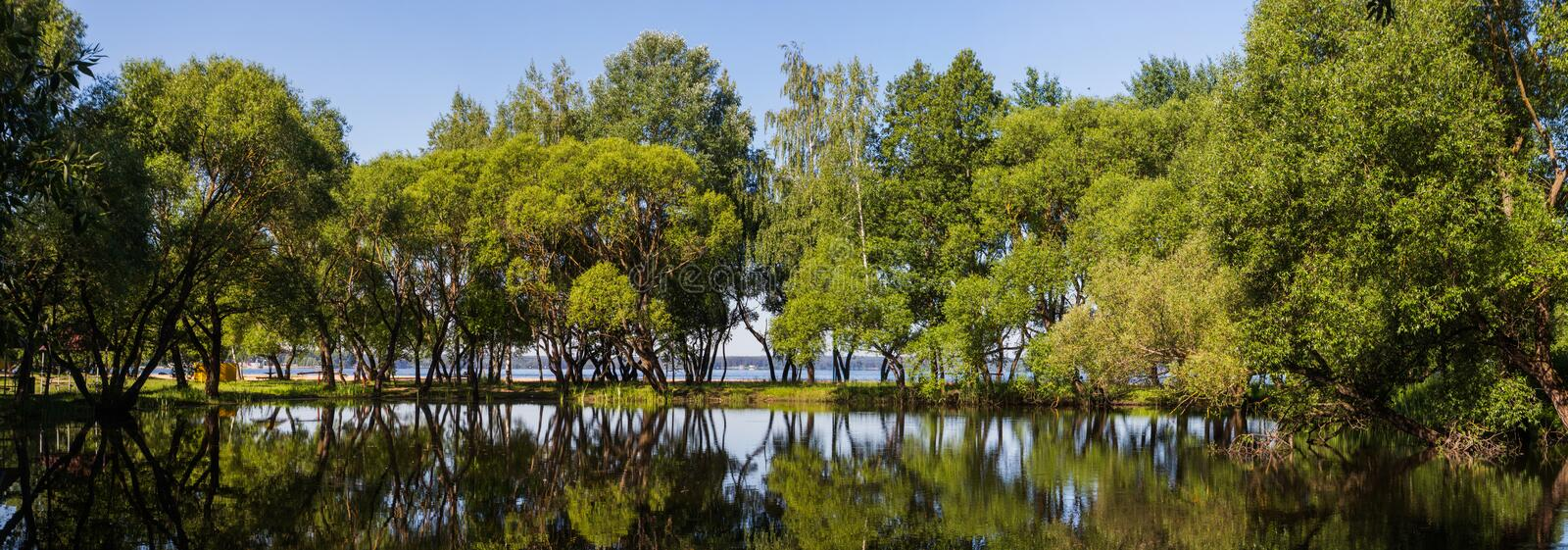 Landscape, bright day. Trees, water, bright sky royalty free stock image