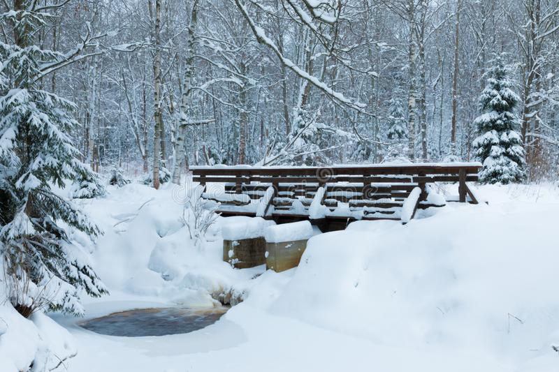 The landscape of the brook and the footbridge in the beautiful winter forest or in the park among the trees under the snow, ice. And hoar royalty free stock photo