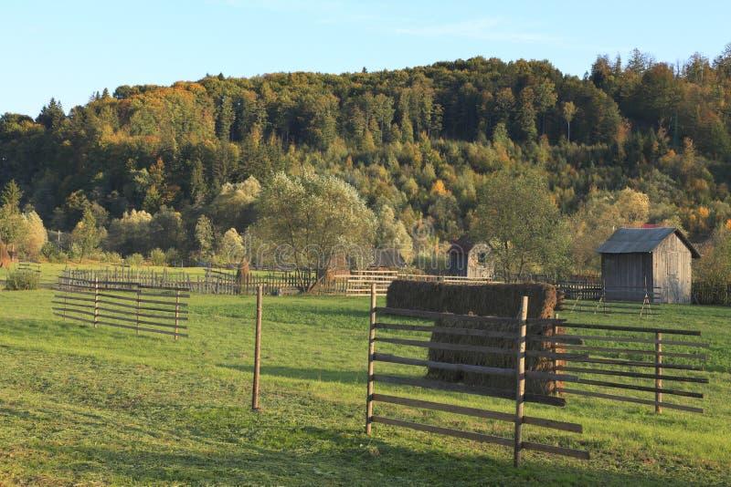 Download Landscape In Bucovina,Romania Stock Photo - Image: 11610090