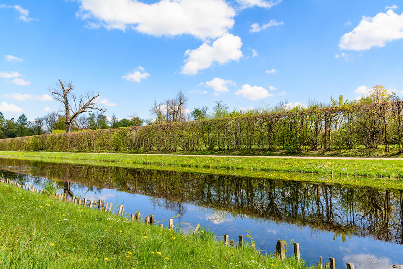 Landscape with canal and hedge royalty free stock photo