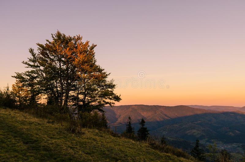 Landscape with carpathian mountains in the spring season. Carpathian mountains in sunny day in the autumn season ukraine landscape forest beautiful green nature royalty free stock images